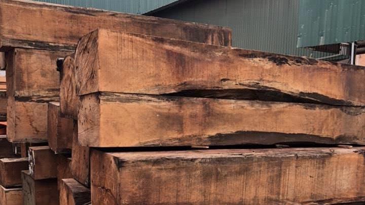 go go do nam phi - 5 Lý do để mẫu bàn ghế ăn gỗ gõ đỏ ngày càng được ưa chuộng trên thị trường